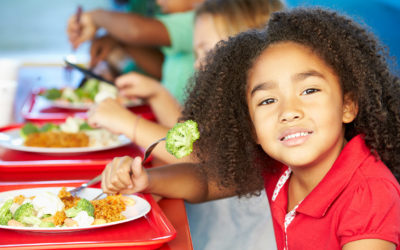 2019-20 Free and Reduced Price School Lunch Information